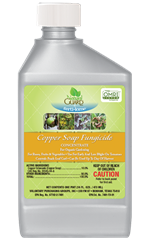 Copper Fungicide Soap